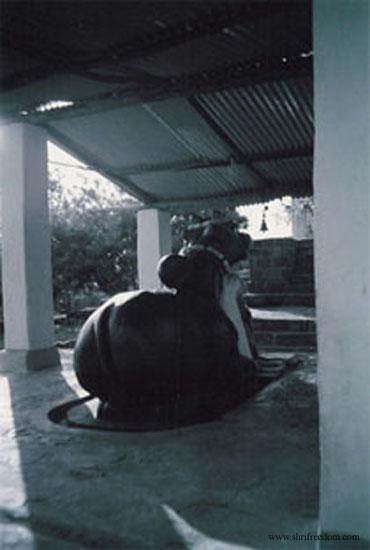 032-nandi